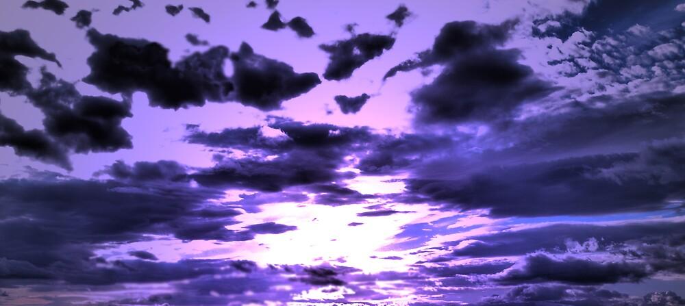 Velvet Nights by Alan Findlater