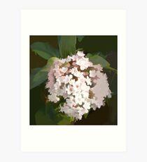 abstract of Verbena Blossom Art Print