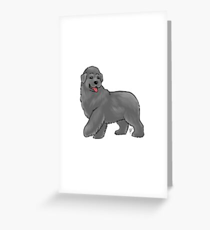 Newfoundland Greeting Card