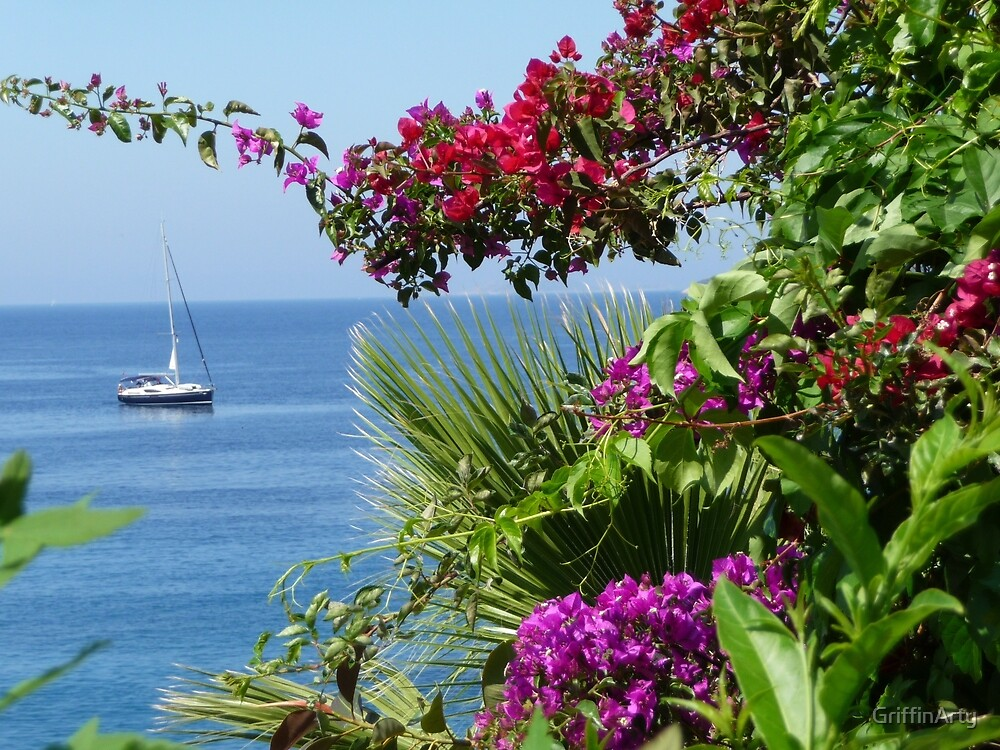 Anchored Sailing Boat, Pink, Red And Purple Flowers by GriffinArty