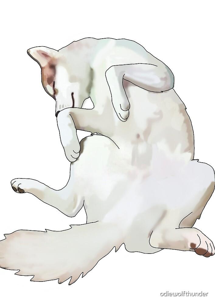 Husky Belly by odiewolfthunder