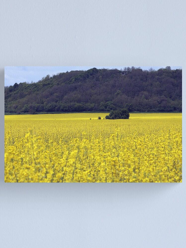 Alternate view of Yellow Sea #3 Canvas Print