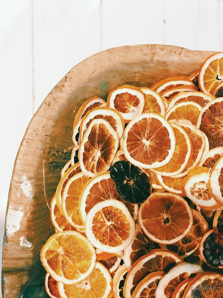 Dried Oranges by tylerelise