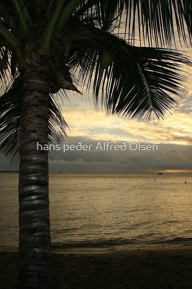Palm On The Beach by hans peðer alfreð olsen