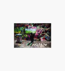 Color Coordinated-Graffiti  Melbourne Art Board