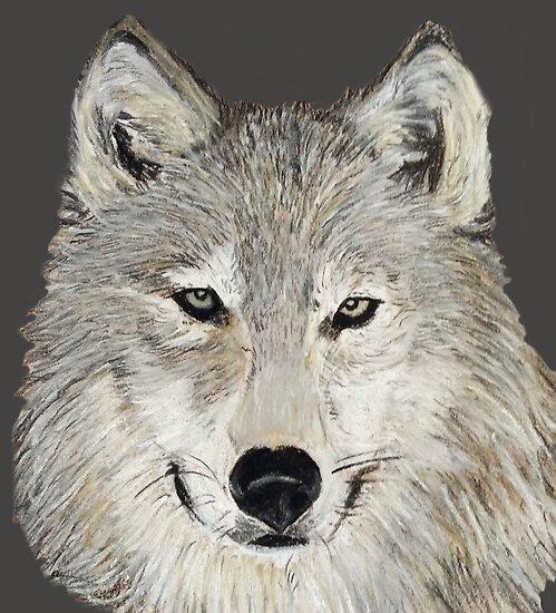Wolf No. 1 by CarolineArts