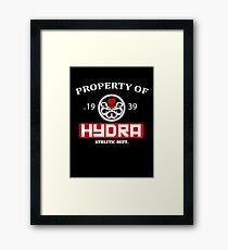 Hydra Athletic Dept. Framed Print