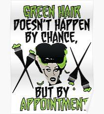 Hairdresser Colorist Humor Funny Wife of Frankenstein Poster