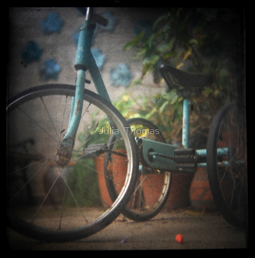 The Bicycle by Julia  Thomas