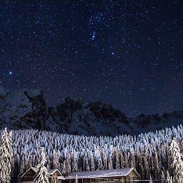 Rustic Christmas by DvorakDesign