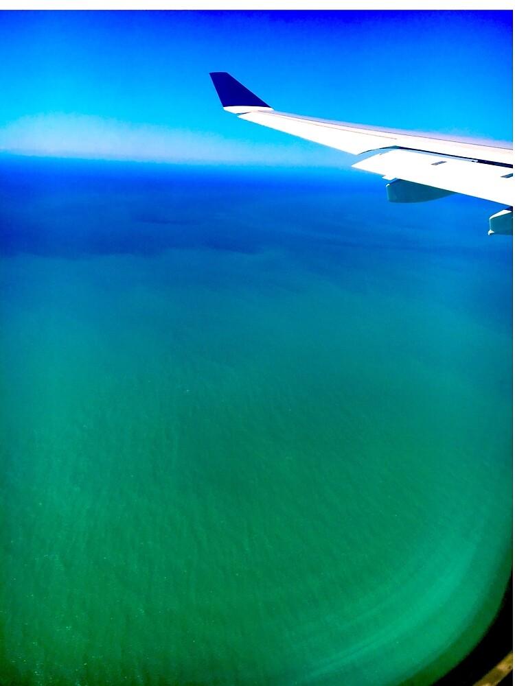 Ocean View by Peachiekean