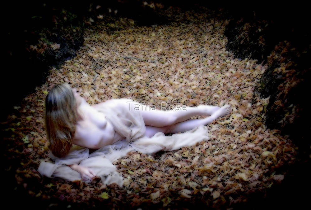 Awakening by Tania Rose