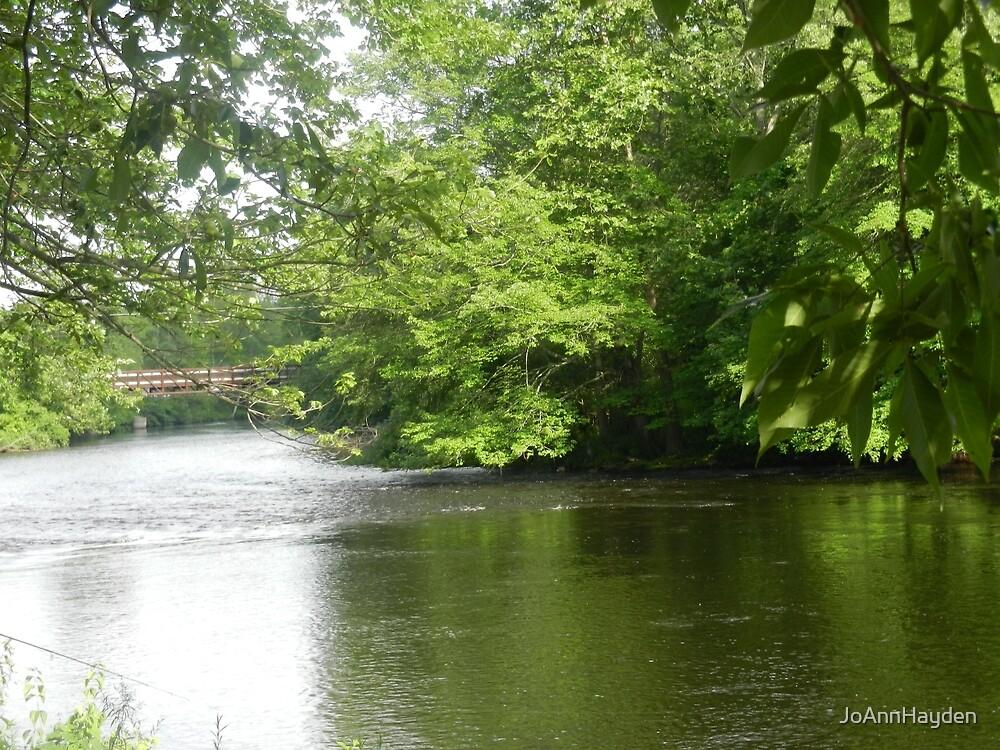 THE SAUGATUCK RIVER by JoAnnHayden