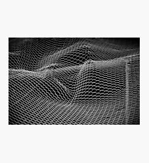 Mesh Photographic Print
