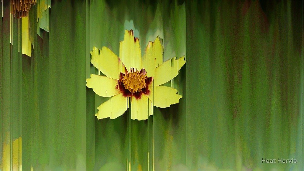 Yellow Flower Green Background Daisy Flowers Floral Plants Nature Watercolor Digital Effect Design Art by margarethaddad