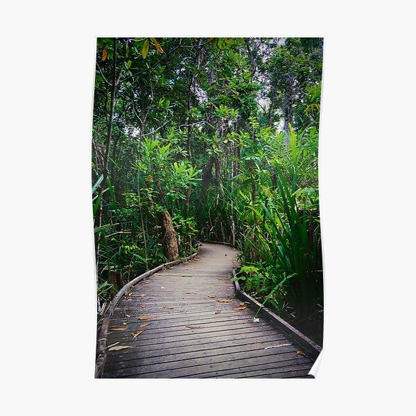 Jungle Boardwalk Poster