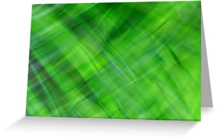 Green on Green by Kitsmumma