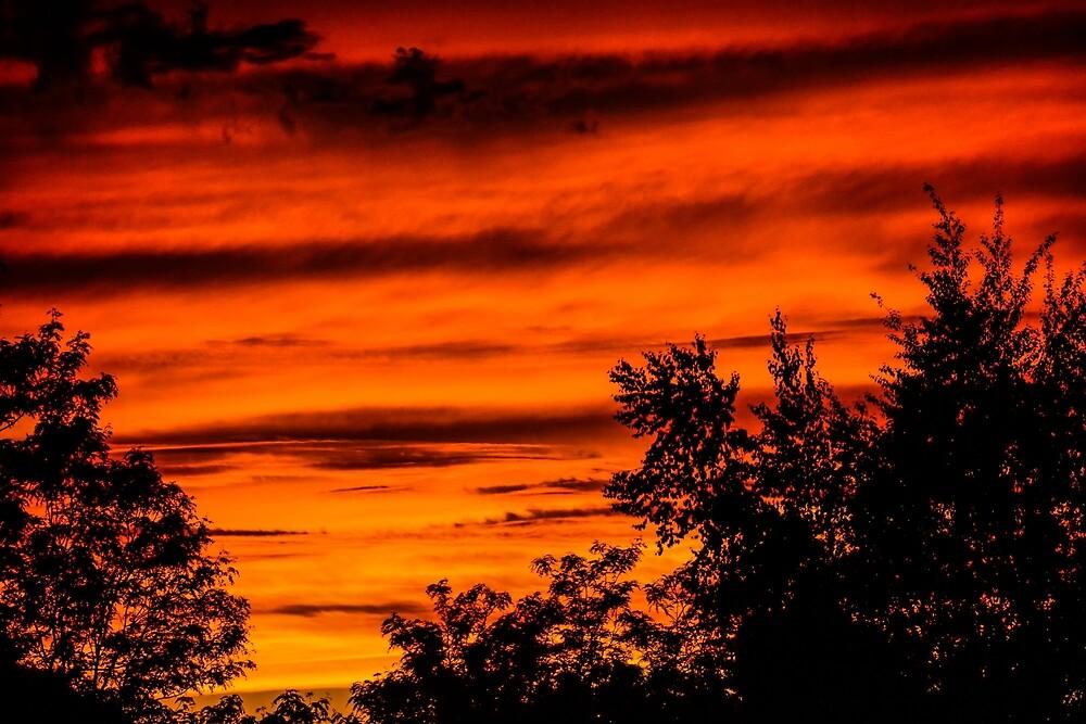 Fire in the Sky by Michael E. Sloane