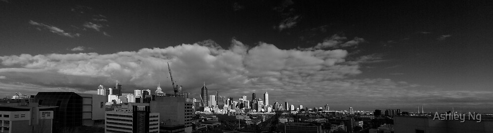Melbourne Panorama 150608 by Ashley Ng