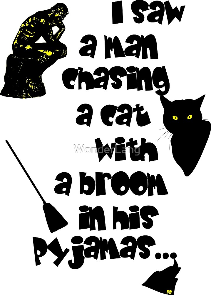 The man, the cat, the broom and the pyjamas by WonderLang