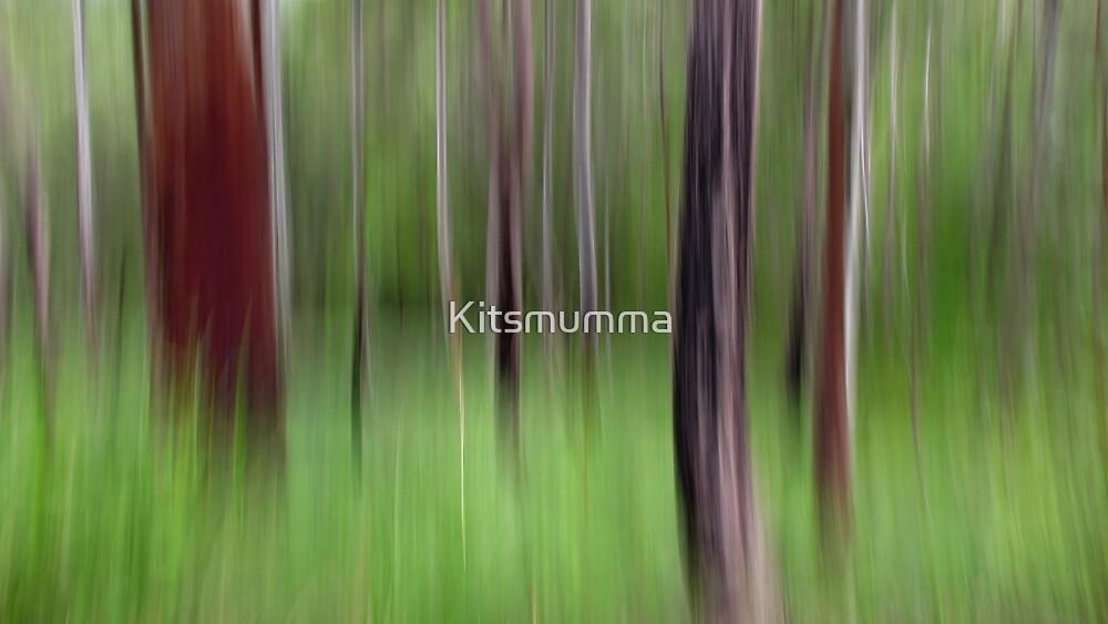 Walk with Me by Kitsmumma