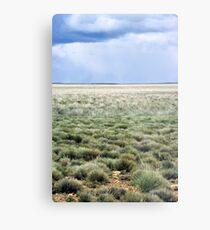 Plains Metal Print