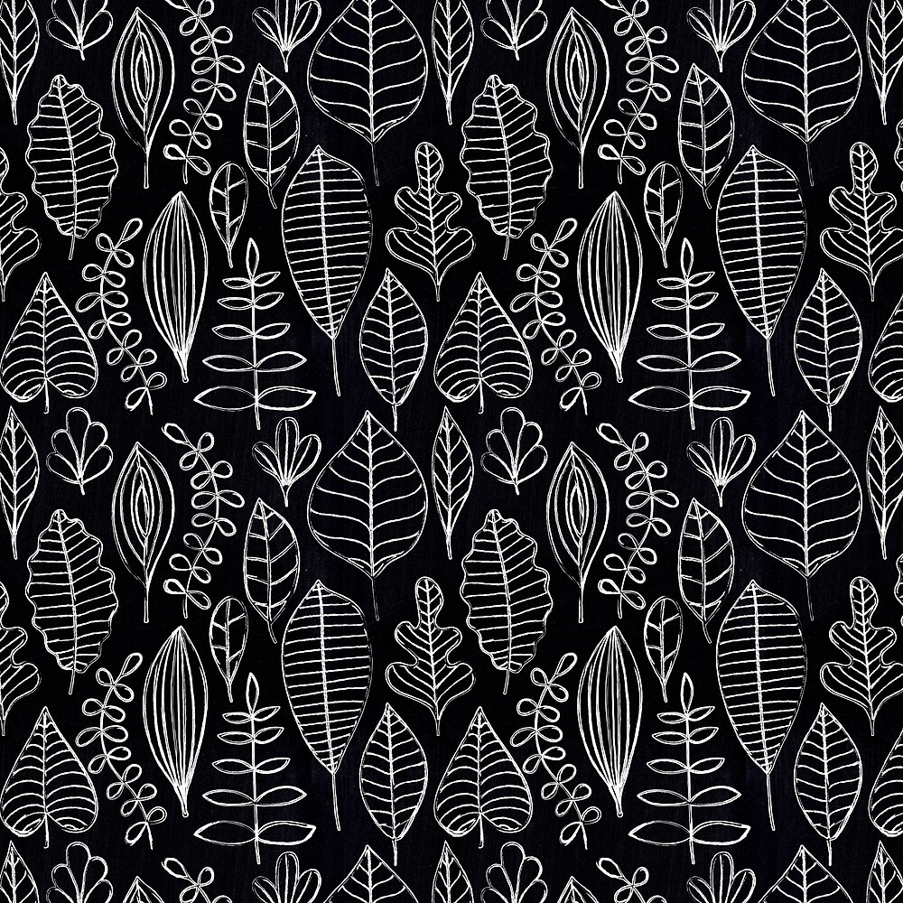 White Chalk Sketch of Leaves on Black Board by Elaine Plesser