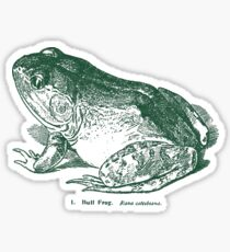 Bull Frog Vintage Woodcut Style Illustration Sticker