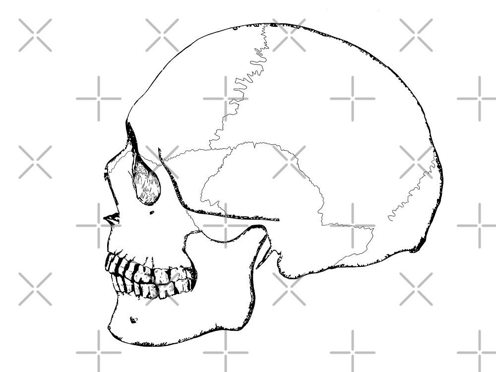 Mr. Bones by OompasArt