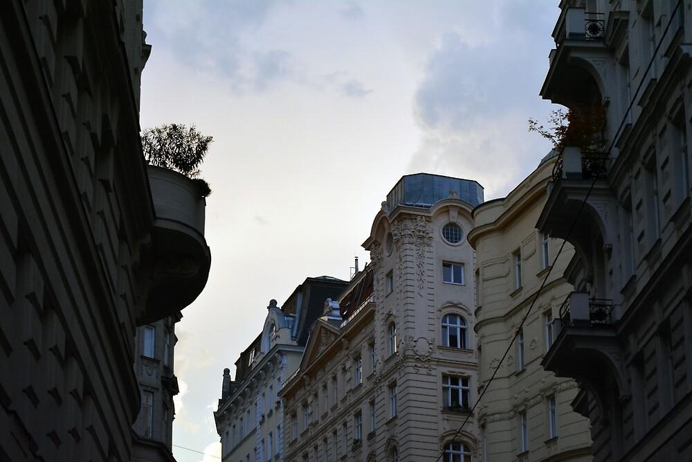 Beautiful classical buildings at sundown in Vienna by oanaunciuleanu