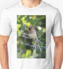 The Little Bandit T-Shirt