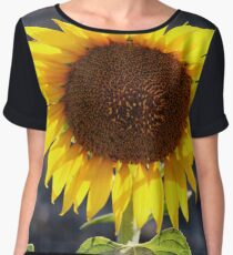 Backlit by the Sun Chiffon Top