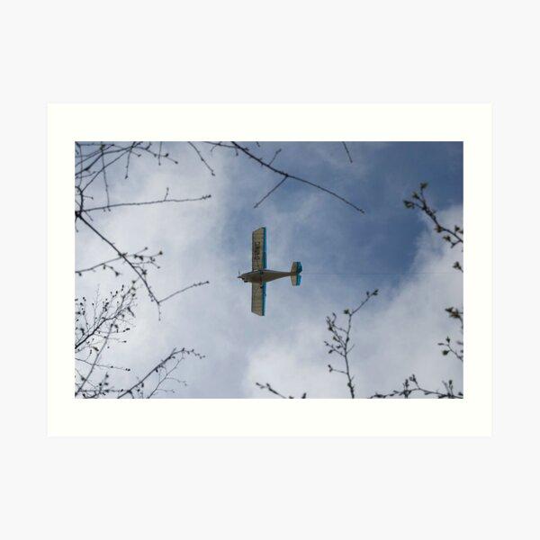 Small plane Art Print