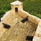 Citadel Guns  by HelenBanham