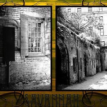 Savannah by Antiismist
