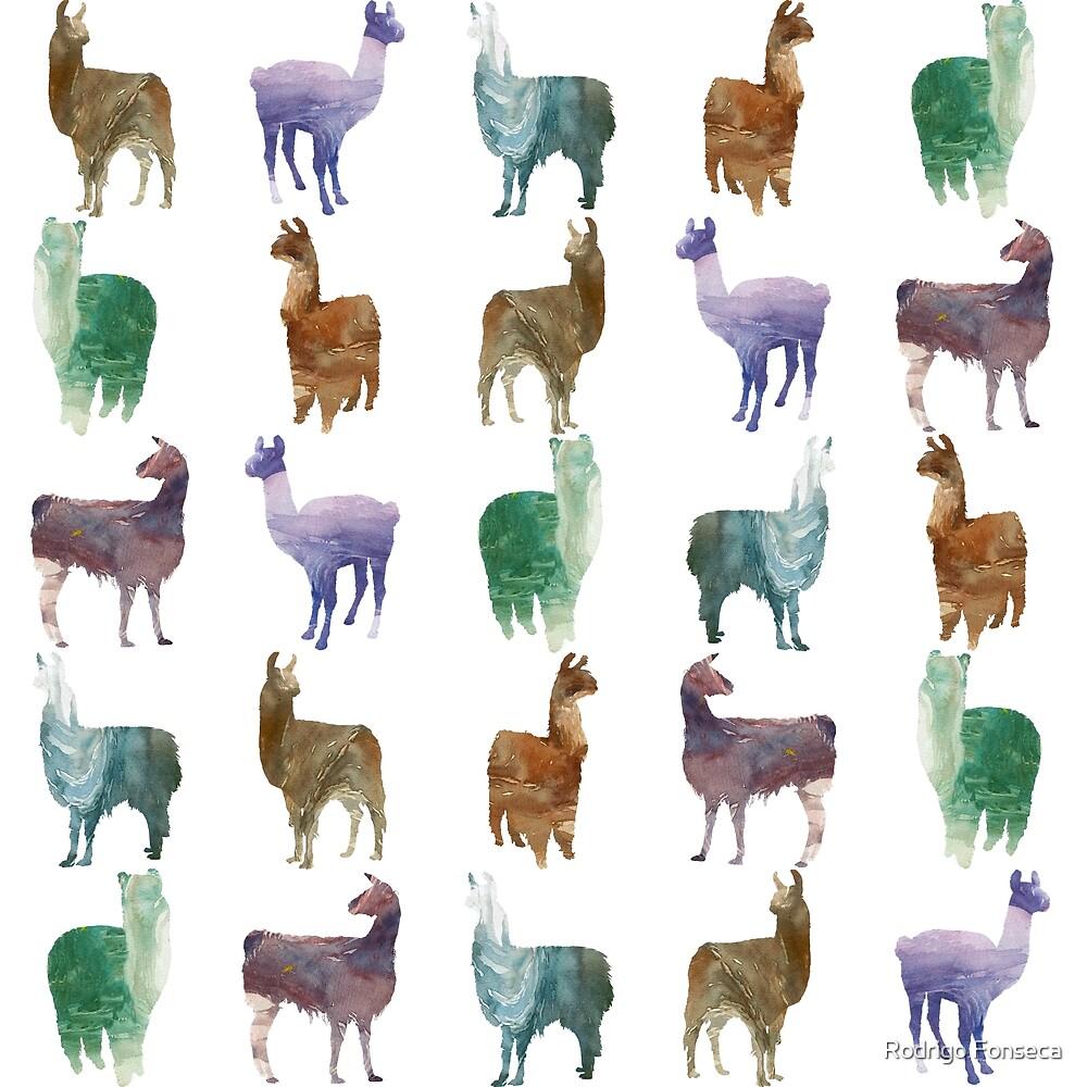 color Lamas by Rodrigo Fonseca
