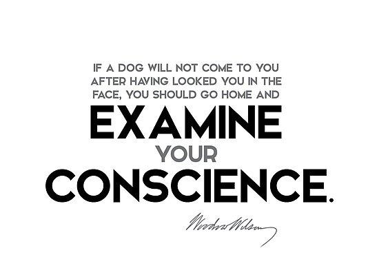 examine conscience - woodrow wilson by razvandrc