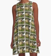 Church in Sidmouth A-Line Dress