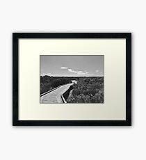 Rhyll Mangrove Boardwalk Framed Print