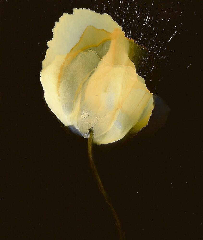 Yellow Rose by JannyD