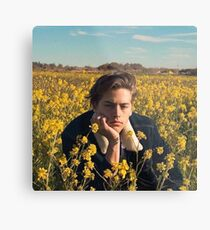 Cole Sprouse  Metal Print