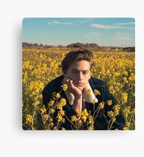 Cole Sprouse  Canvas Print
