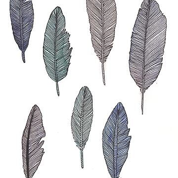 Feathers #1 by amylewisartist