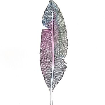 Feathers #4 by amylewisartist
