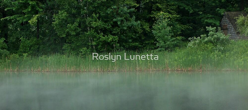 june morning by Roslyn Lunetta