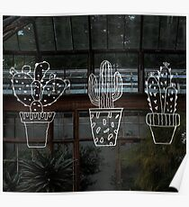Wacky Cactus  Poster