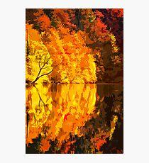 Golden Reflection Photographic Print