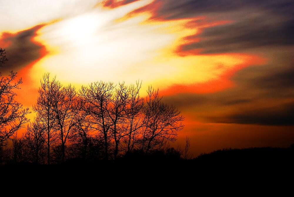 sun set. by Joey  Visser