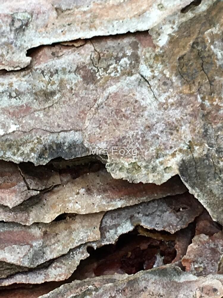 Tree Bark, New Forest, Emery Down Walk, Lyndhurst.  by Mrs Foxy