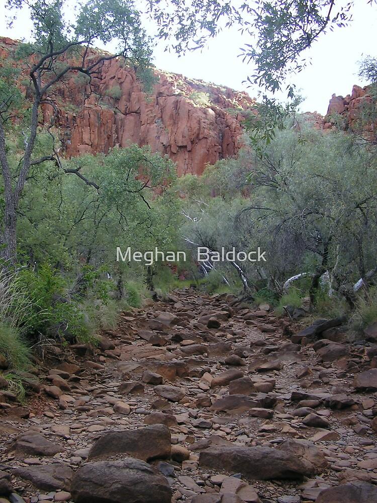 pathway to... by Meghan  Baldock